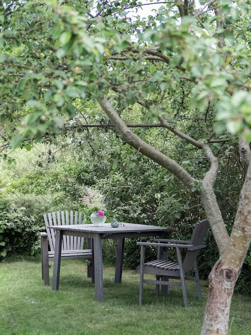 Trädgården är lummig och bjuder på flera mysiga sittplatser. Möbler, Ikea.