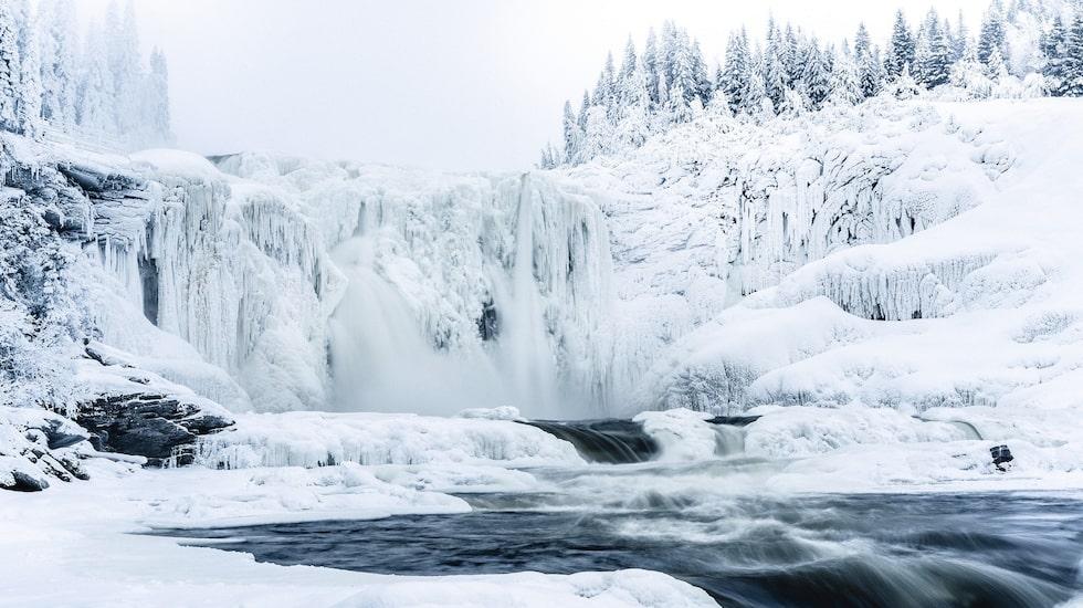 Tännforsen, ett av Sveriges största vattenfall, fryser på vintern till en vacker isskulptur. Isfallet ligger 22 kilometer, 22 minuter med bil och 22 kurvor från Åre.