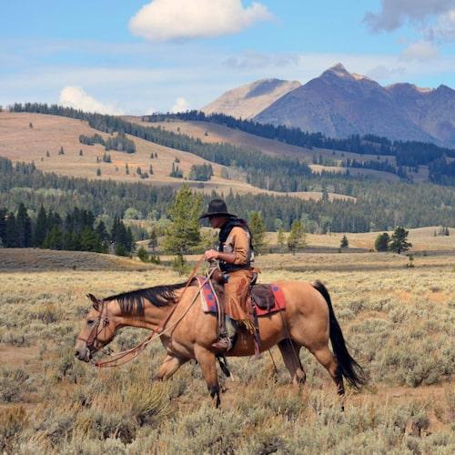 Nationalparken instiftades 1872 och är världens äldsta.
