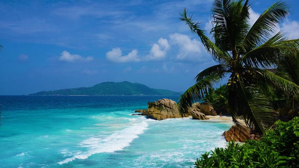 På Seychellerna är det lätt att hitta en favoritstrand – och en favoritö. Alla har olika karaktär.