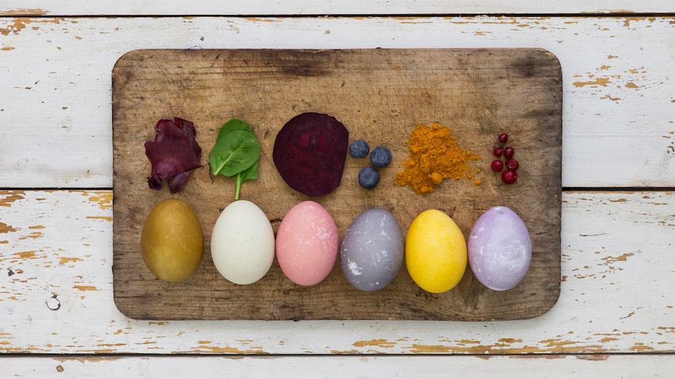 Med rödbeta, blåbär och gurkmeja får du vacker färgade påskägg.