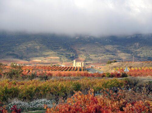 Åk på vinsafari i Rioja!