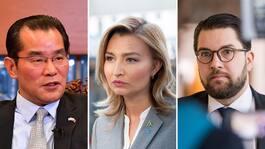 Kinesiska ambassaden fördömer SD- och KD-krav