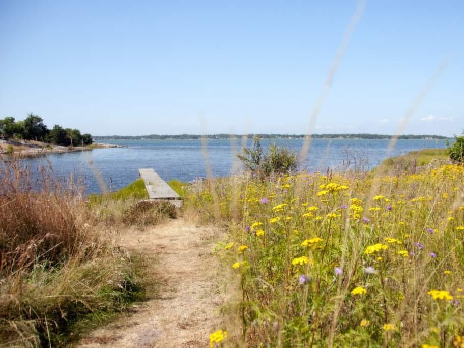 Vid Aspö brygga lockar det svala havsvattnet en varm sommardag.