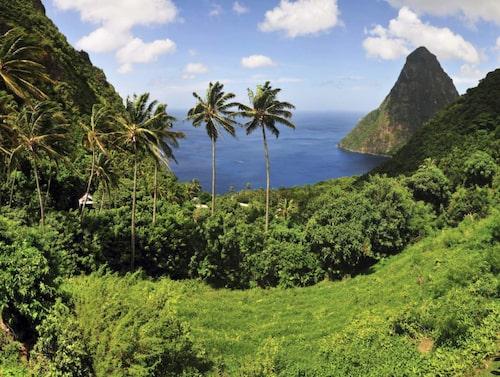 Gröna regnskogar på Saint Lucia