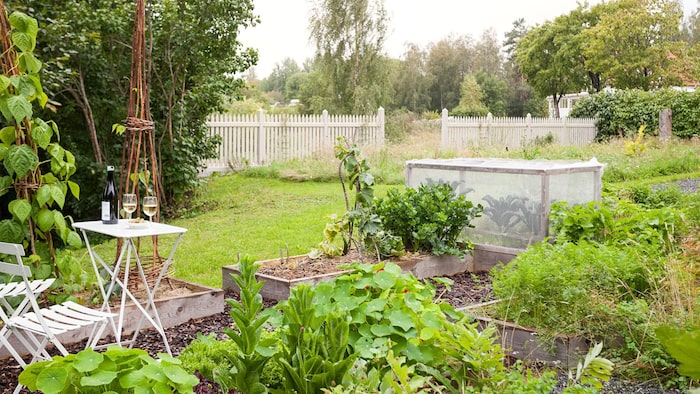 Här finns till exempel är köksträdgård.