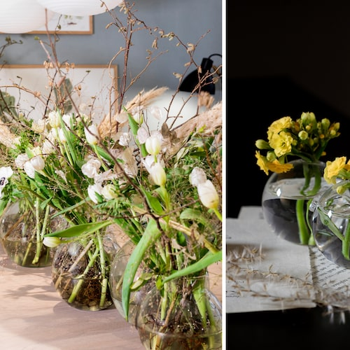 Kvistar i buketten och krukväxter i vasen