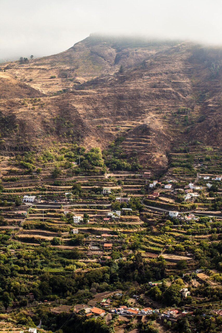 Den norra tredjedelen av ön är mycket grönare än resten av Gran Canaria.