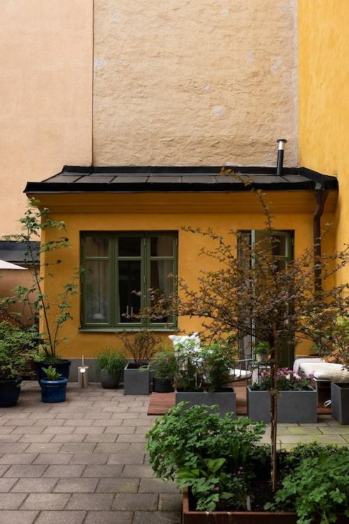 Huset är knappt 39 kvadratmeter, men har plats för både separat sovrum och walk in closet.