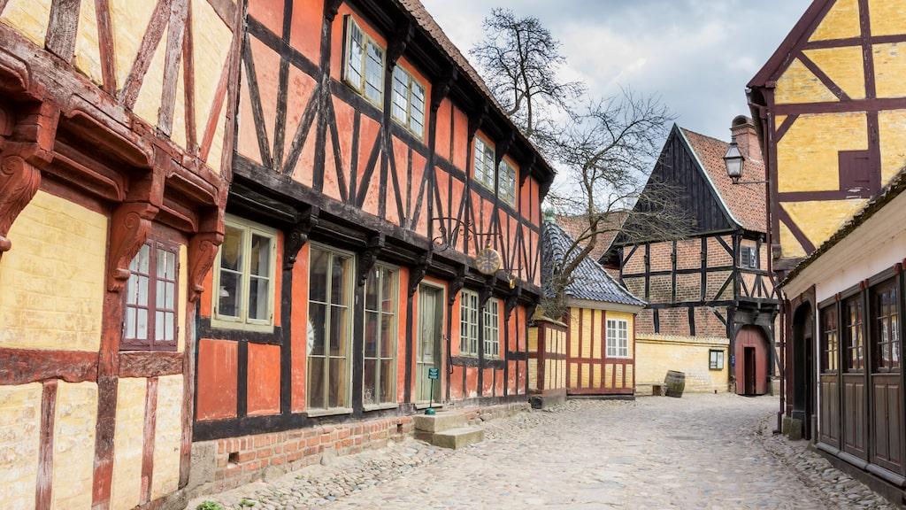 Den idylliska Møllestien mitt i centrala Århus är värd ett besök. Kullerstensgatan kantas av färgglada små hus som dateras till 1700talet
