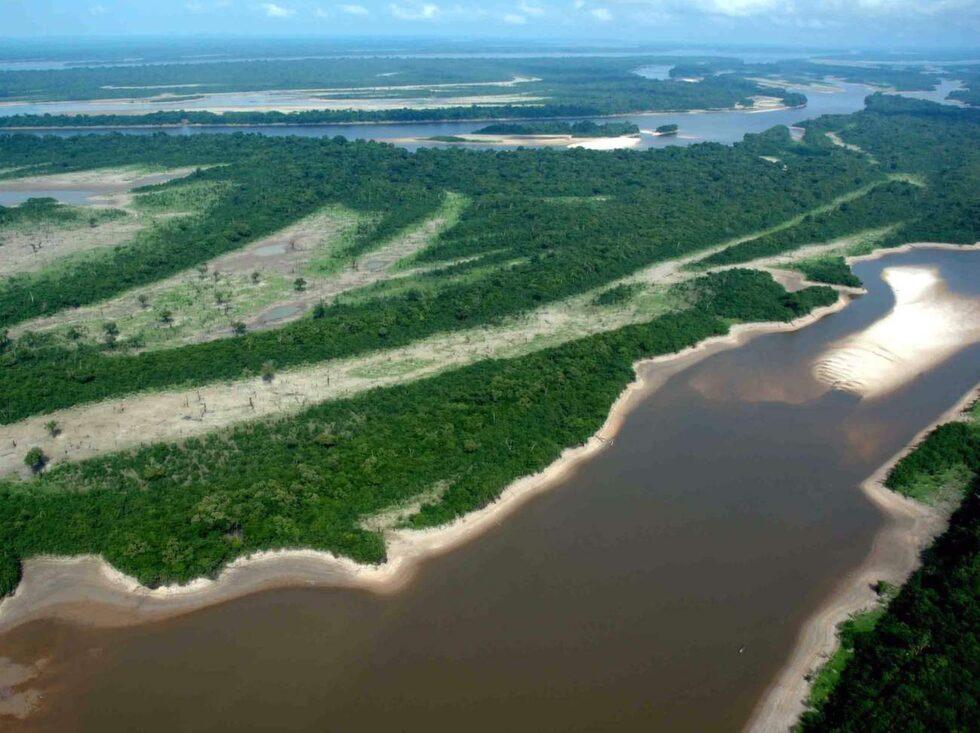 Amazonas är ett måste.