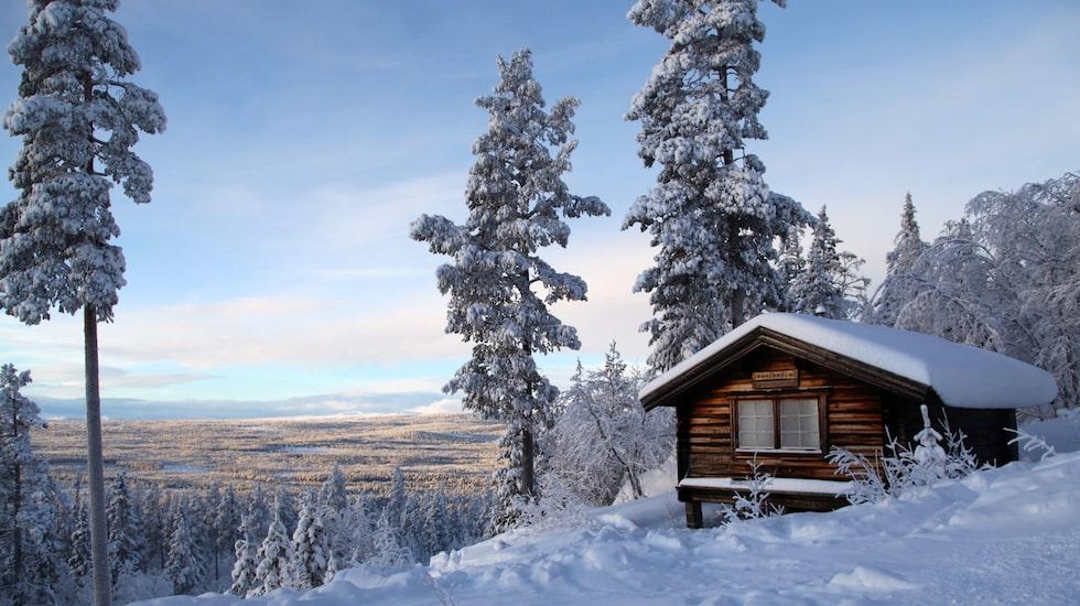 Toppstugan i Tännäskröket med utsikt över myrar och gammelskogar.