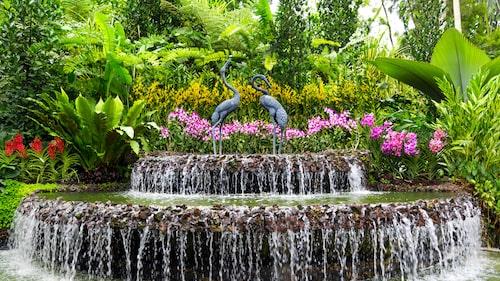 Utspridd över 74 hektar nästan mitt i city är vackra Botanic Gardens inte bara stadens lunga.