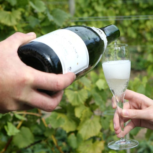 För dig som gillar champagne