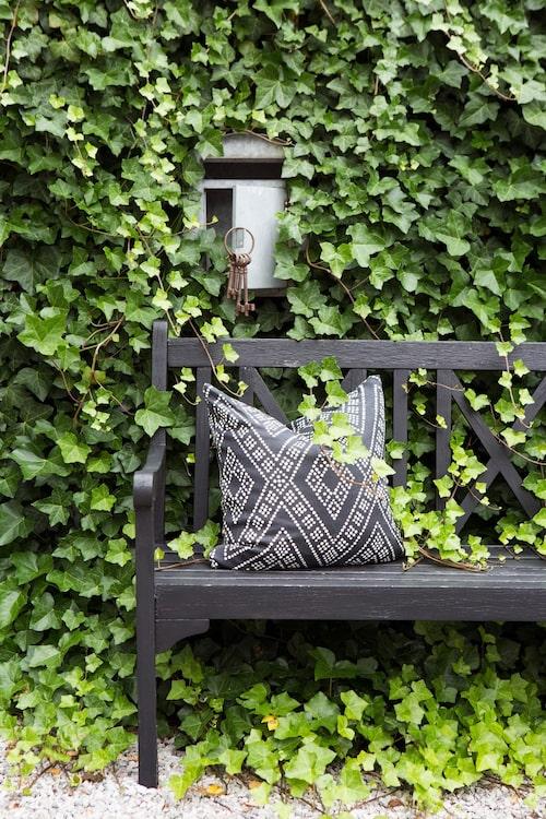Mot ett plank, överväxt av murgröna står en bänk som Jeanette målat svart. Postlådan med dekorationsnycklar är en charmig detalj inköpt i USA.