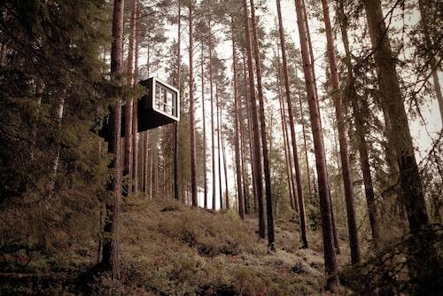 Förmodligen det coolaste hotellet i Sverige.