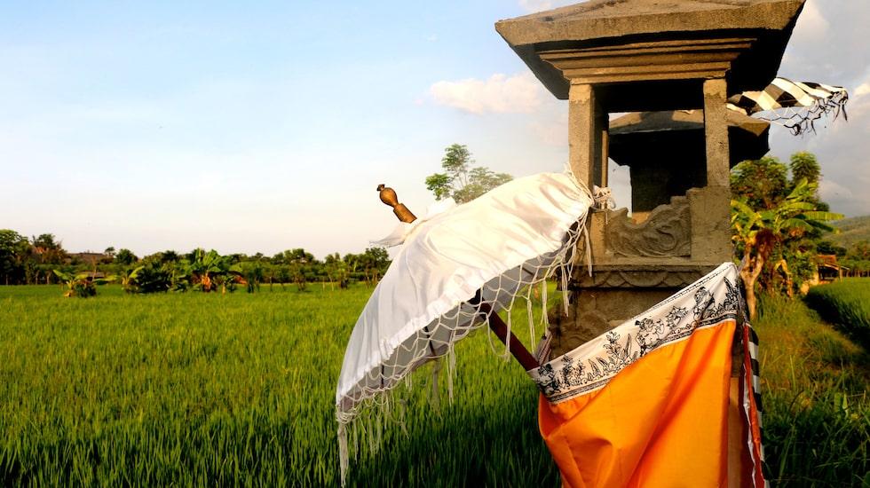 Bali bidrar med många olika symboler och med mycket kultur.