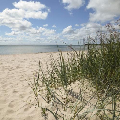 Få svenska stränder kan mäta sig med Sudersand