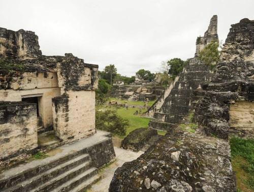Mayastaden Tikal, Guatemala