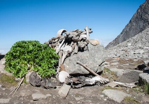 Kvarlevorna av 300 människor vid Roopkundsjön i Himalaya upptäcktes 1942 – men mysteriet fick sin förklaring först 2004.