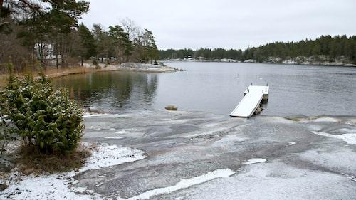 Vad sägs om ett vinterdopp på Svartsö?