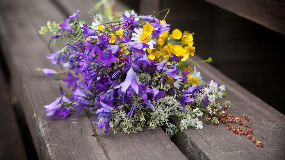 En gammal tradition är att plocka sju sorters blommor på midsommarafton och lägga dem under kudden. Under natten sägs det att den man ska gifta sig med visar sig.