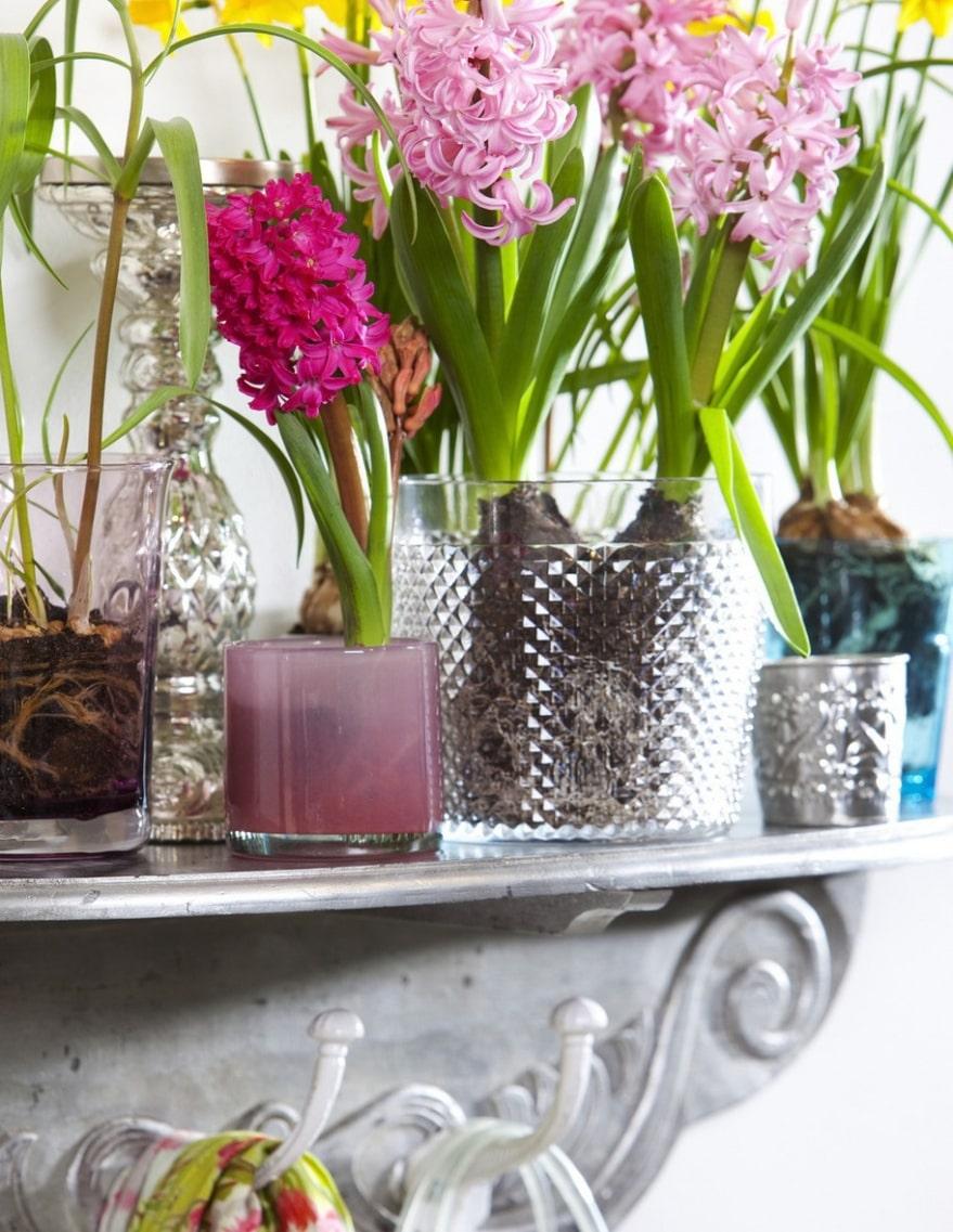 Loppisfynd. Flera små loppisfynd, glasskålar i olika färger och former passar utmärkt att plantera lökarna i.