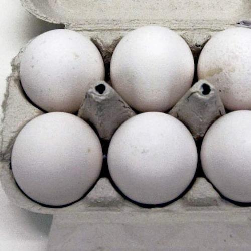 Ladda upp med ägg i kylen.