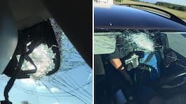 """Danska bilistens skräck: """"Trodde någon sköt oss"""""""