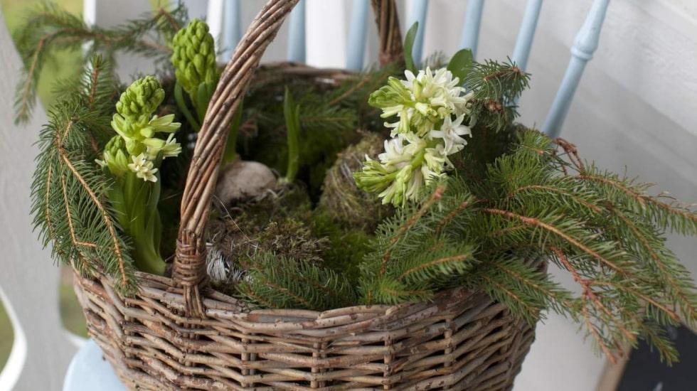 Passa på att ta in naturen, bind en härlig krans att hänga på dörren och piffa till dukningen med grönt.
