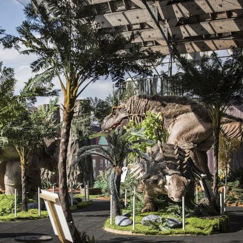 En helt ny dinosaurieutställning gästar Universeum i sommar.