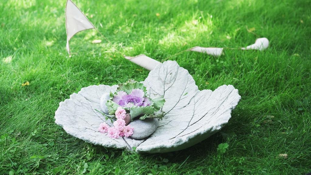 Att gjuta ett fat eller fågelbad av rabarberblad är enklare än du kanske tror. Lite längre ner i artikeln finns en film som visar exakt hur du gör ett själv.