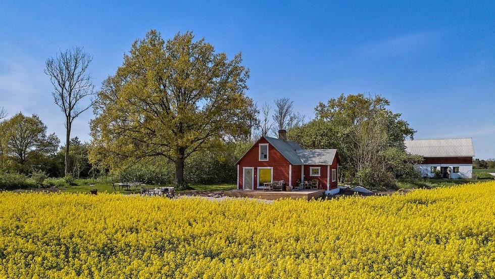 Huset ligger vid vackra rapsfält och är till salu för 1 875 000 kronor.