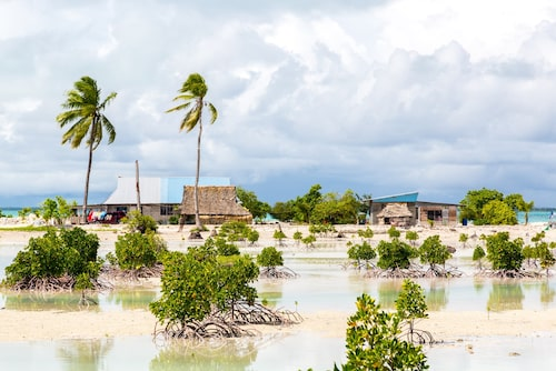En by utanför South Tarawa på Kiribati, omgiven av palmer och mangroveträd.