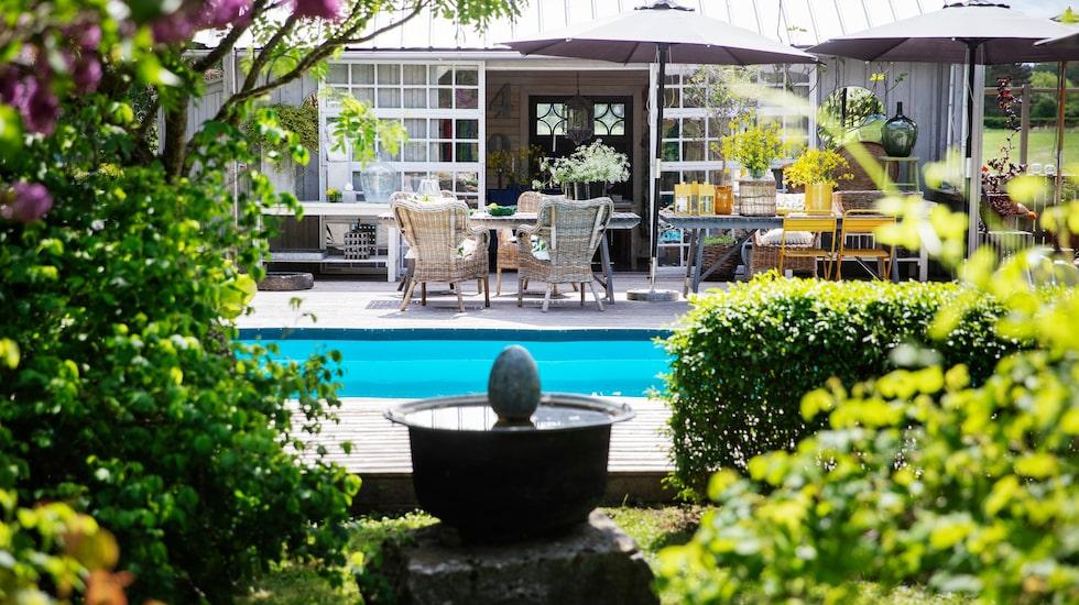 Poolen ligger längst ner i trädgården och här umgås familjen med släkt och vänner under varma sommardagar.