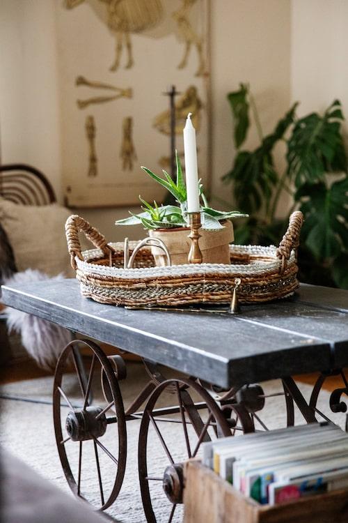Soffbordet har paret byggt själva av en gammal barnvagn och några bräder. Korgbricka, Ulriksdals slottsträdgård.