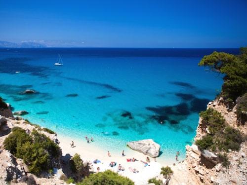 Sardinien är vackert, vindpinat och glittrande.