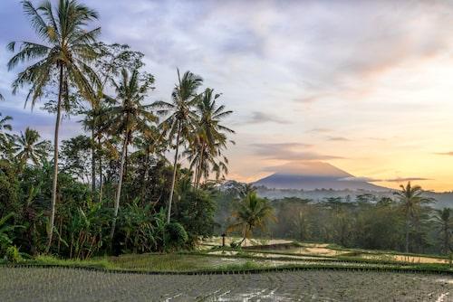 På Bali har man inga väderstreck, man utgår från det heliga berget Gunung Agung.