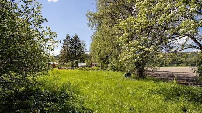 Utanför huset finns en stor gräsmatta och höga vackra träd.