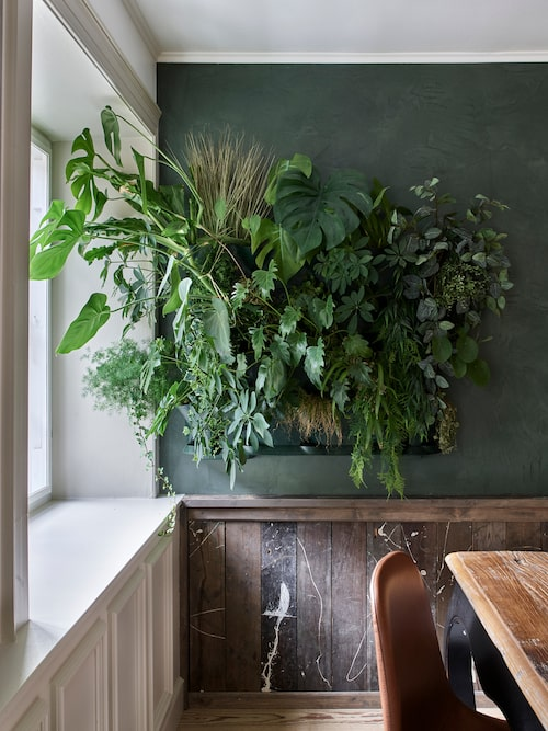 Väggsystemet för växterna heter Mini Garden Vertical.
