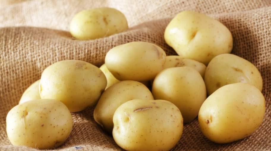 Potatisen, utskälld och bortglömd?