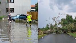 Regnkaos slår till – högt vatten och fallna träd