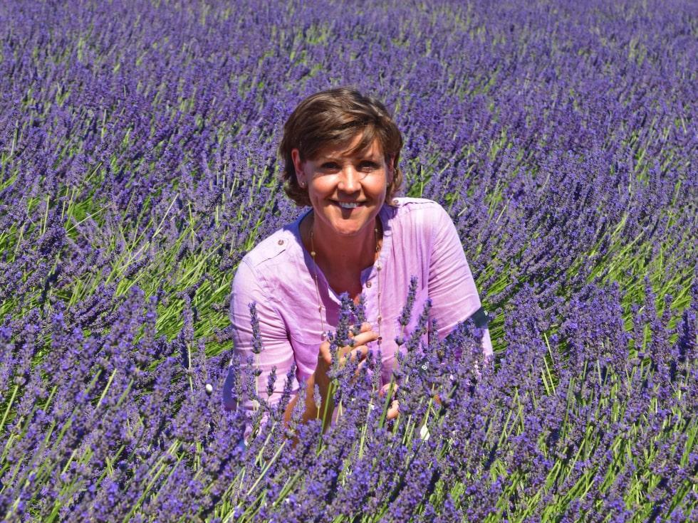 Lottie Knutson återvänder till soliga Provence och lavendelfält.