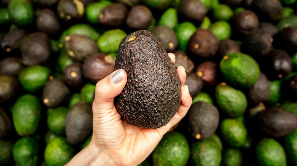 Avokado är supergott – men det tar ganska lång tid för en hård avokado att mogna.