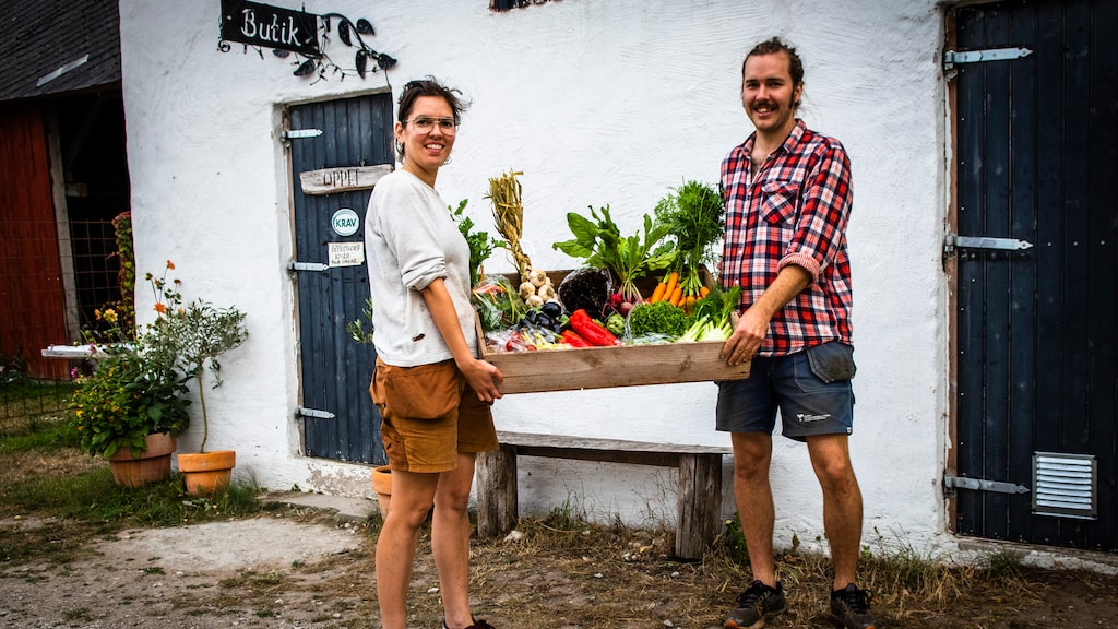 Det unga paret Andrea Bendelin och Viktor Sundén på Smissarve gård satsar stenhårt på sin verksamhet som genomsyras av ett grönt och hållbart fokus där alla produkterna säljs i deras gårdsbutik.