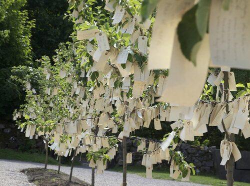 "Yoko Onos Wish Trees for Wanås""."