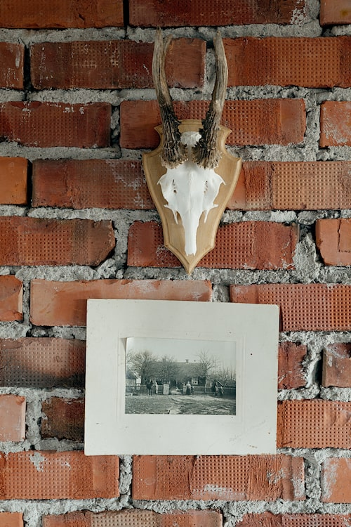 Den gamla blottade tegelväggen ger karaktär åt vardagsrummet. Fotot föreställer Holkgården och dess tidigare ägare.