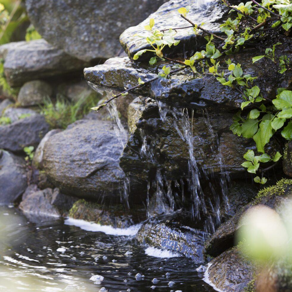 Vatten i trädgården är ett måste för Viktoria. Här används en del av trädgårdens stora stenhög som bäck ner i dammen.