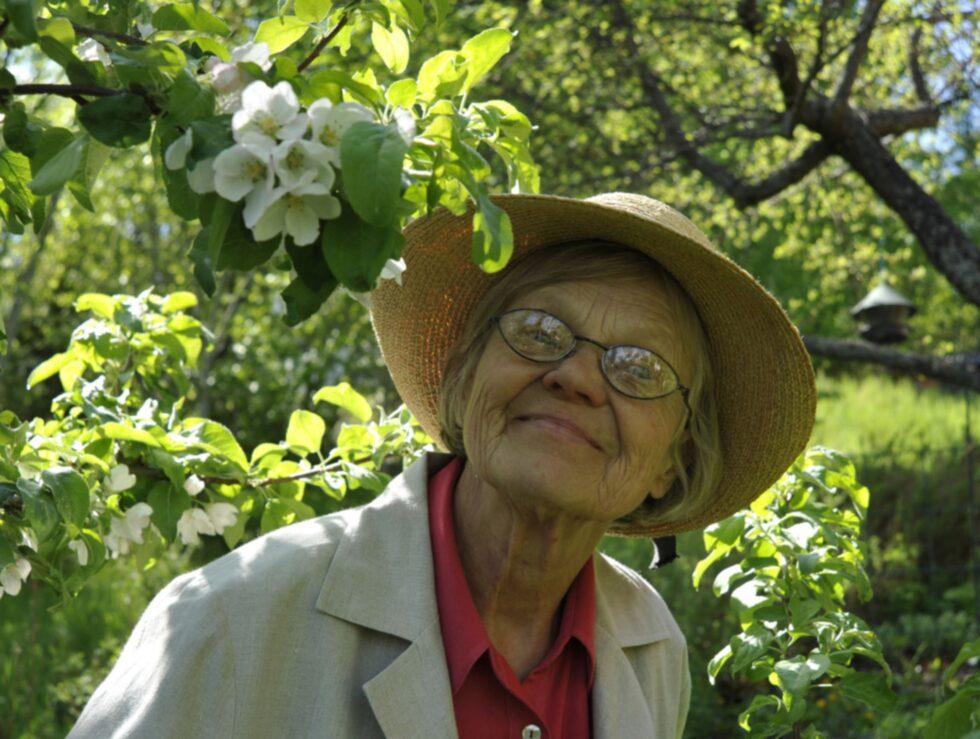 Friskare äppelträd, inga vattenskott och godare äpplen. Det är några av de fördelar som underhållsbeskärningen innebär, enligt Görel Kristina Näslund, som har skrivit flera böcker om äpplen.
