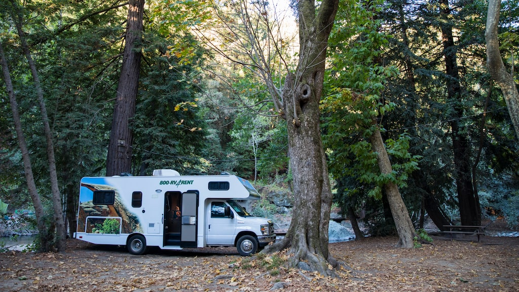 Fint stopp på Fernwood RV Resort & Campground.